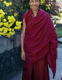 2008攝於策秋林寺2